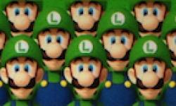 L année de Luigi vignette Luigi