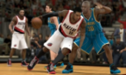 nba 2k13 head vignette
