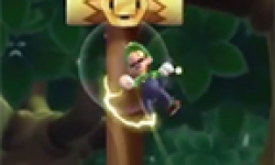 new super luigi u vignette head
