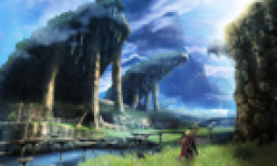 Screenshot Capture Image xenoblade chronicles nintendo wii vignette head 3