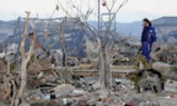 Vignette Icone Head Tsunami Japon Tremblement de terre 14032011