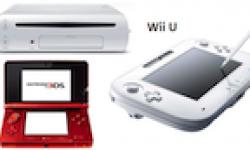 vignette wii u 3DS