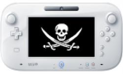 Wii U GamePad hack image head vignette