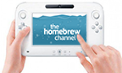 wii u gamepad homebrew channel vignette head