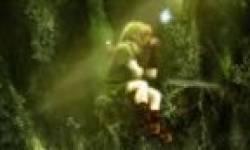 wii u hyrule zelda zeldau image artwork head vignette icone.png