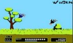 Duck Hunt ICON0