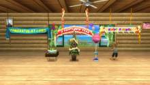go-vacation-nintendo-wii-screenshot-capture-image- 043